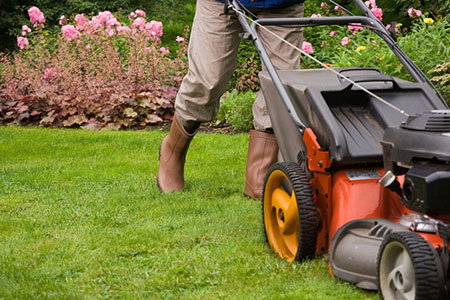Gardening & yard maintenance